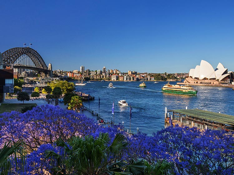 Discover Spectacular Sydney
